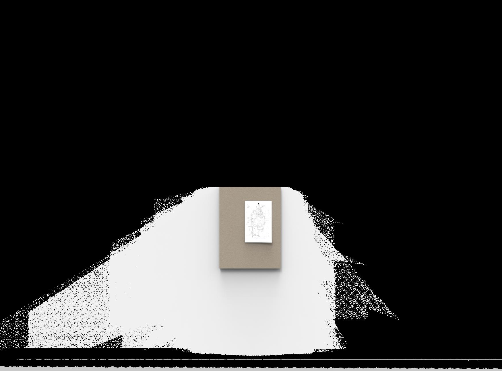 445 x 595